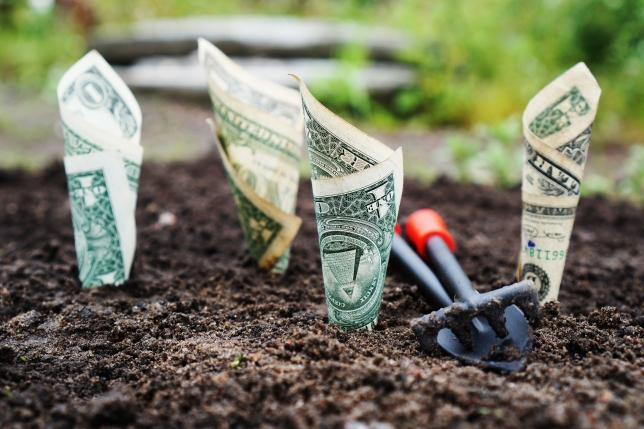 100 de înțelepciuni despre bani