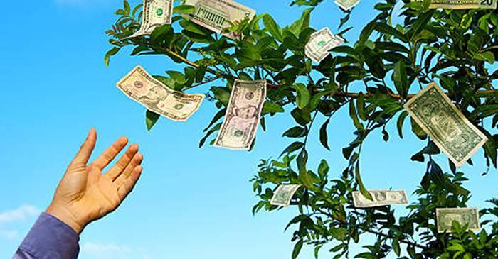 cum se câștigă bani atunci când nu există bani deloc