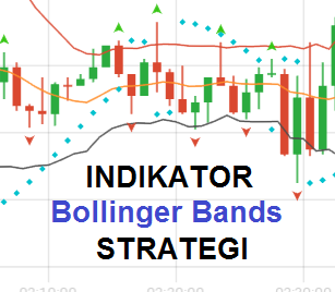 strategii cu indicator video lager