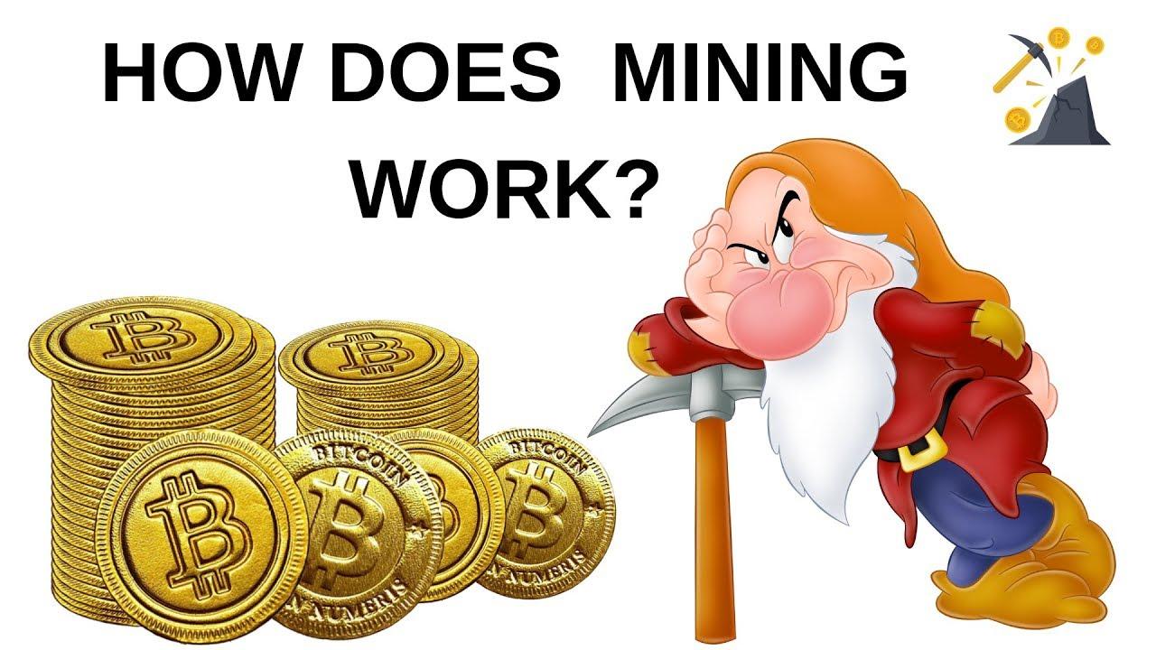 cum funcționează comerțul cu bitcoin definirea unei opțiuni de schimb