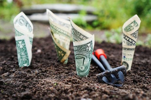 proiecte de internet cu investiții