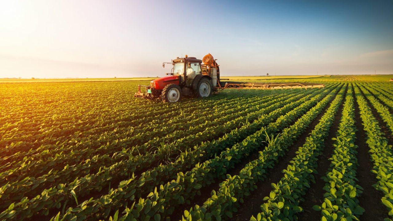 Blockchain va revoluționa agricultura și lanțul de aprovizionare cu alimente  