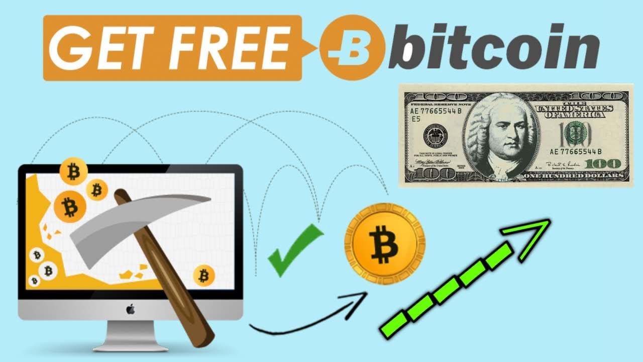 cum să faci bani cu un trader de bitcoin feedback despre tranzacționarea opțiunilor