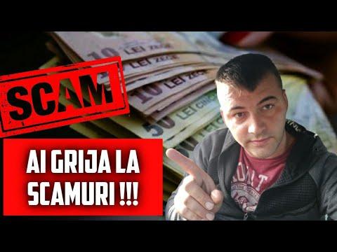 Cum câștigi bani cu un website ieftin - Miorița Verde